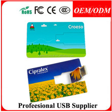 card usb flash drive/Personalized 1gb 2gb 4gb card usb,customized your own design