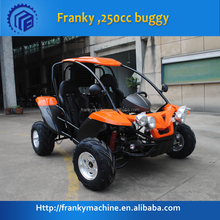 small factory idea joyner 250cc buggy
