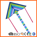 Rainbow Delta Kite for sale