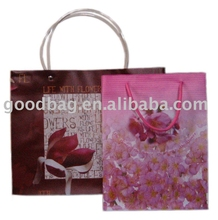 Fashion Design PP Printed Gift Bag With Your Logo Design