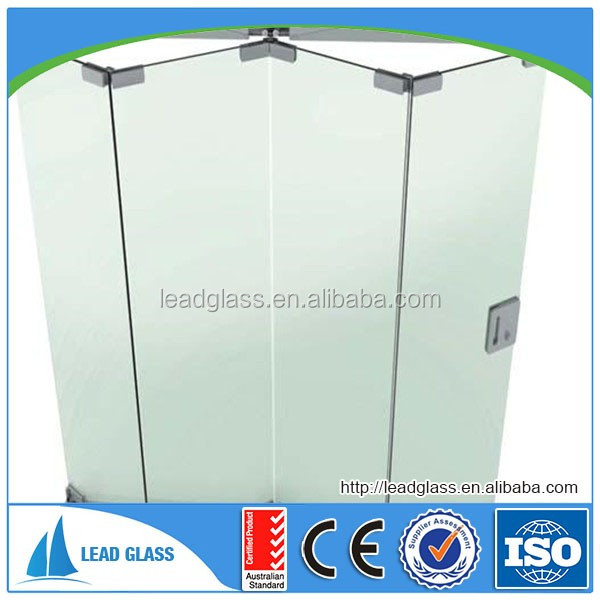 Frosted Shower Glass Door