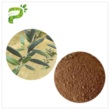 Hot sale Natural Food Grade Improving Immune System olive leaf powder extract