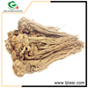 Wholesale China Trade chinese angelica p.e. 5:1 herbal medicine