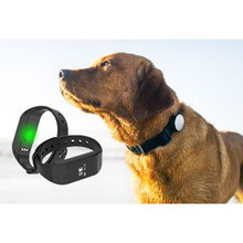 newest custom design waterproof IP67 bluetooth pet dog pedometer for pet activity tracking