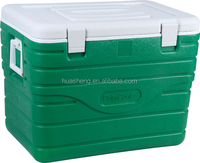 Thermal Type and Food Use compressor car cooler box