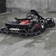 Karting / Karting Cars / Adult Racing Go Kart for Sale with WET CLUTCH SYSTEM