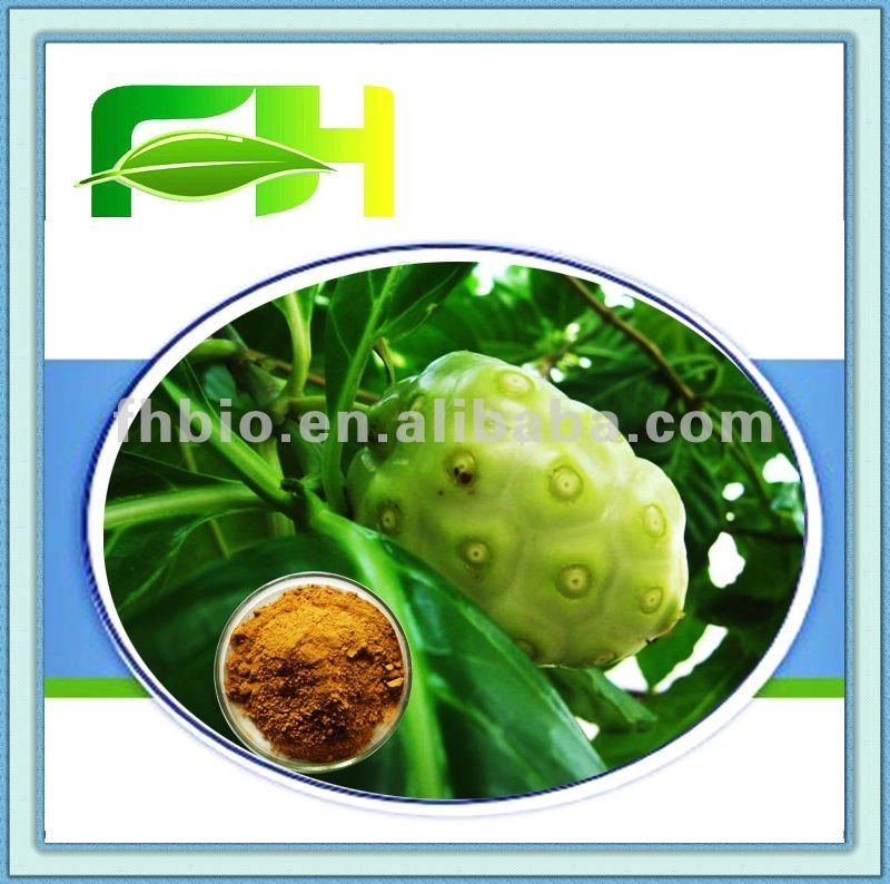 100% Natural Morinda Citrifolia Extract