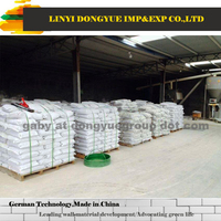 dry mix cement mortar from dongyue