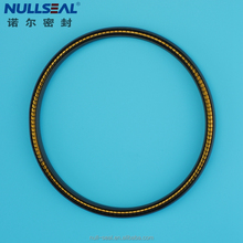 Radial Seals PTFE based Single Deck Helical Spring Lip Seals Rings