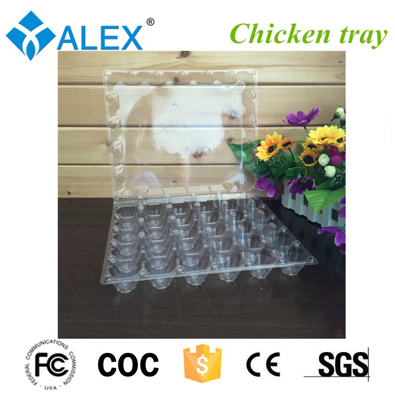 Plastic chicken egg tray for place eggs