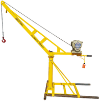 quality and quantity assured mini hand operated lifting portable roof crane for sale