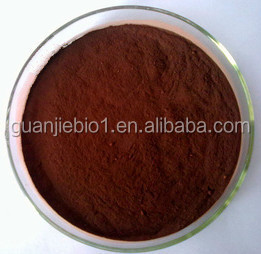 Factory Price High Quality Black Elder Flower Extract Sambucus Nigra Flower Extract