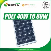Bluesun 40W Polycrystalline solar panel 36 cells with CE TUV Certified