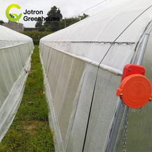 China Low Cost Agricultural Greenhouse For Tomato