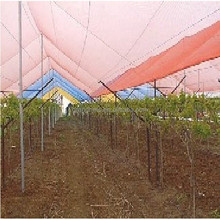 steel shade structure,red tube net,made in china shade net