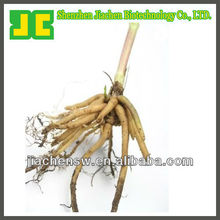 Good Product!!!Natural Valeriana Officinalis/Valerian Extract Powder 10:1 With Best Price