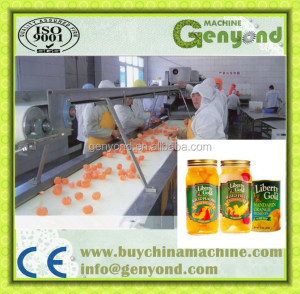 High efficiency canned mandarin orange processing plant / orange processing machine