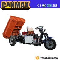 Popular battery truck van cargo tricycle
