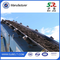 Odorless Oil Resistant Conveyor Belt GTO 52 Used Machine For Sale