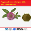 Hong Che Zhou health product plant extract 10:1 Red clover extract