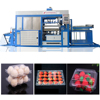 /product-detail/fully-automatic-large-plastic-cable-tray-thermoforming-making-machine-60565964313.html