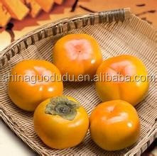 SALE SALE SALE!!! sweet and fresh and crisp fruit persimmon