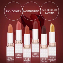 Fashion color cosmetic lipstick matte