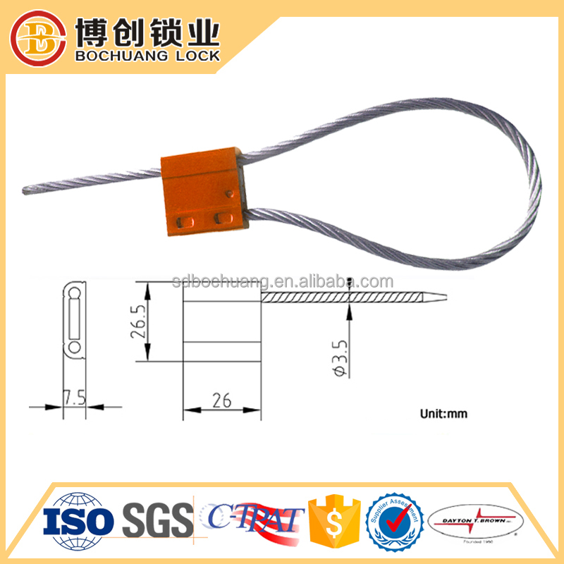 Metal strap cargo protect seal
