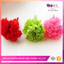 5-6cm Fast Delivery Small MOQ preserved carnation