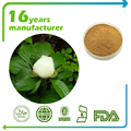 Factory supply Kosher&Hala certificated white peony root extract powder
