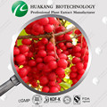 China Wholesales Price Schisandra Berry Dry Extract Exporter