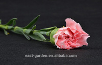 Cheapest carnation flowers for hotel ornament singapore