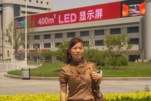 2017 China new product transparent glass window wall led facade display