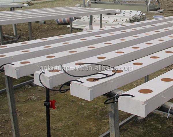 Hydroponics Plant Pvc Pipe Low Cost Agricultural