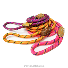 high quality colorful nylon rope pet dog leash slip trainning lead