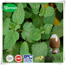100% Natural lemon balm leaf extract/Melissa officinalis L/lemon balm powder