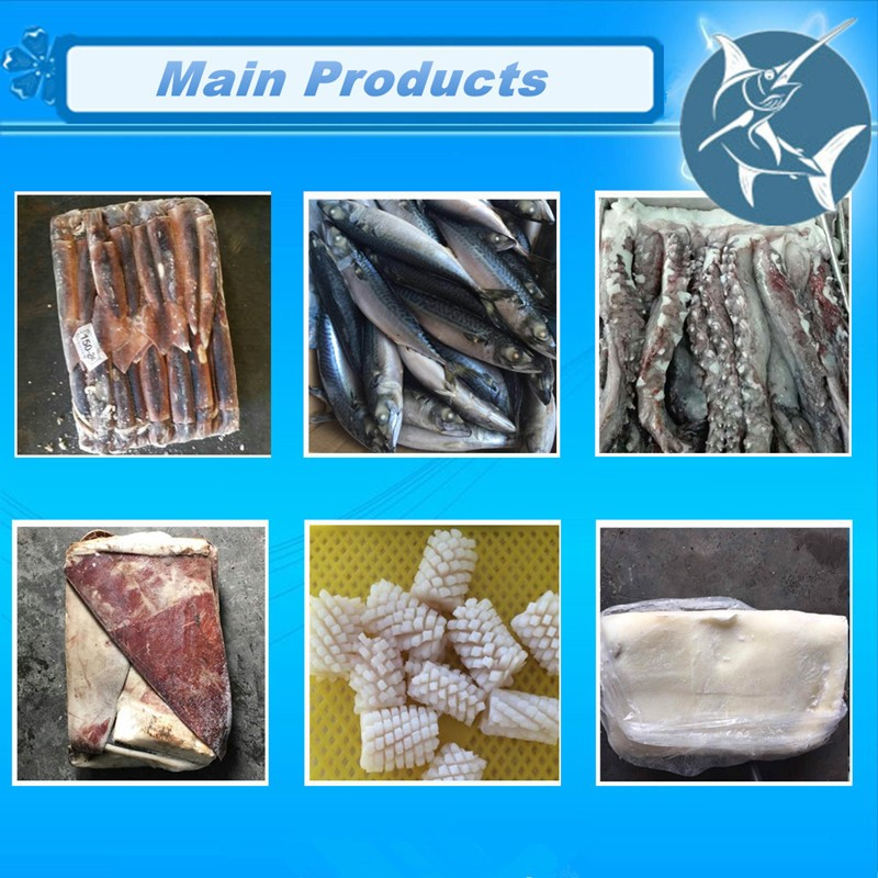 frozen hgt sardine fish for canning for market