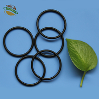 FFKM Rubber Sealing O Ring for Chemical Reactor