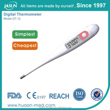 Professional Manufacturer Of Outdoor/Indoor/Wireless Thermometer