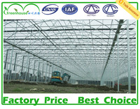 Galvanized Steel Frame Polycarbonate Greenhouse
