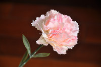 pink color carnation for Mother's day artificial flower made in china