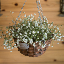 Factory price wholesale large round wicker hanging baskets for potted plants
