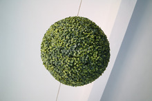 Plastic Boxwood Ball