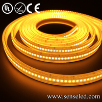 UL Listed Waterproof 24V 5.76W/FT 72LED 504LM Per Foot 16.4FT Roll 80RA CRI IP68 Warm White 2400K 3528 led strip light
