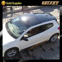 Window static cling film