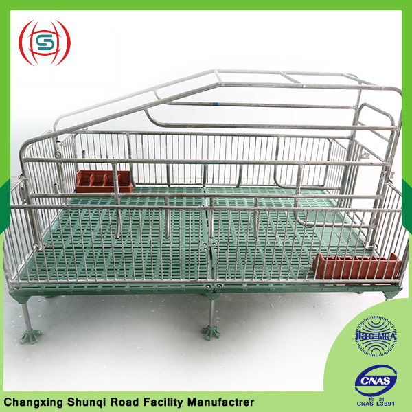 Pig farming project tools and equipment pig cage