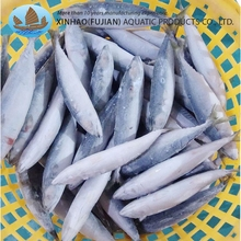 Best selling whole round iqf frozen Chinese canned mackerel fish
