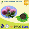 GMP factory 100% pure natural P.E powder/Red Clover Extract powder Total isoflavones 1%~60%