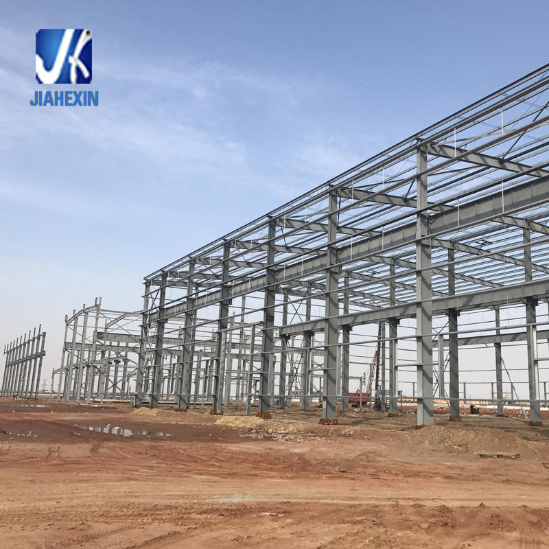 OEM factory design steel dome space frame chicken farm building
