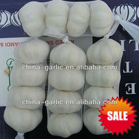 """2013 Nature Garlic"", jinxiang crop, low price, cold storage, no sprout"
